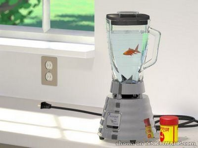 Weird cute aquariums kidsaquariumsquotes and more for Fish in a blender