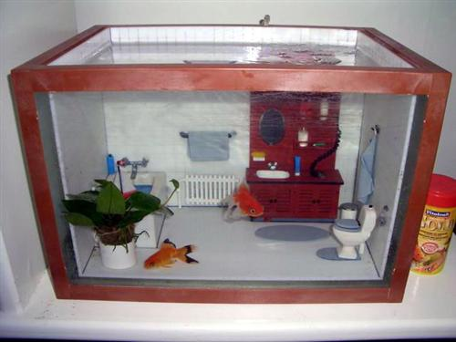 Weird cute aquariums kidsaquariumsquotes and more for Odd decorations for home