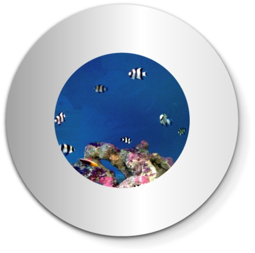 Cute fish tanks kidsaquariumsquotes and more for Cute fish tanks