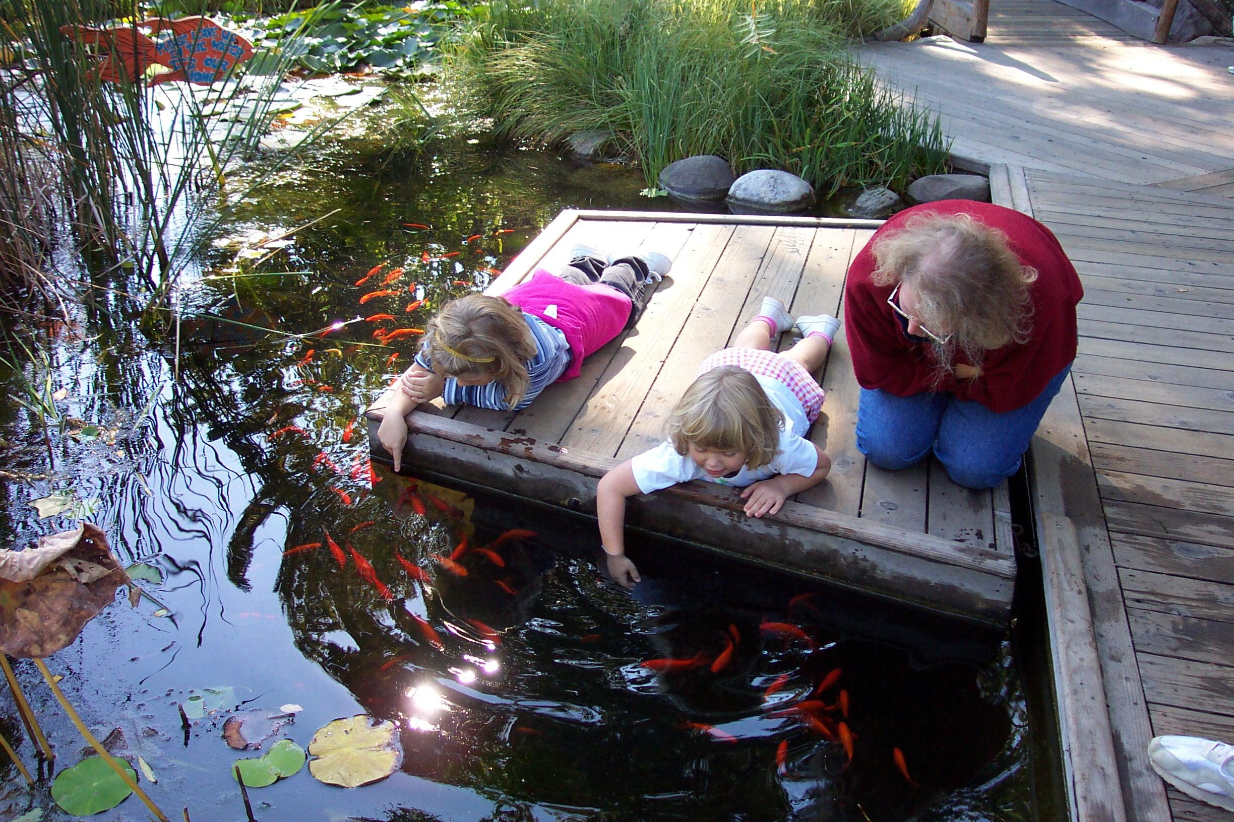 Freshwater kidsaquariumsquotes and more for Aquarium fish for pond